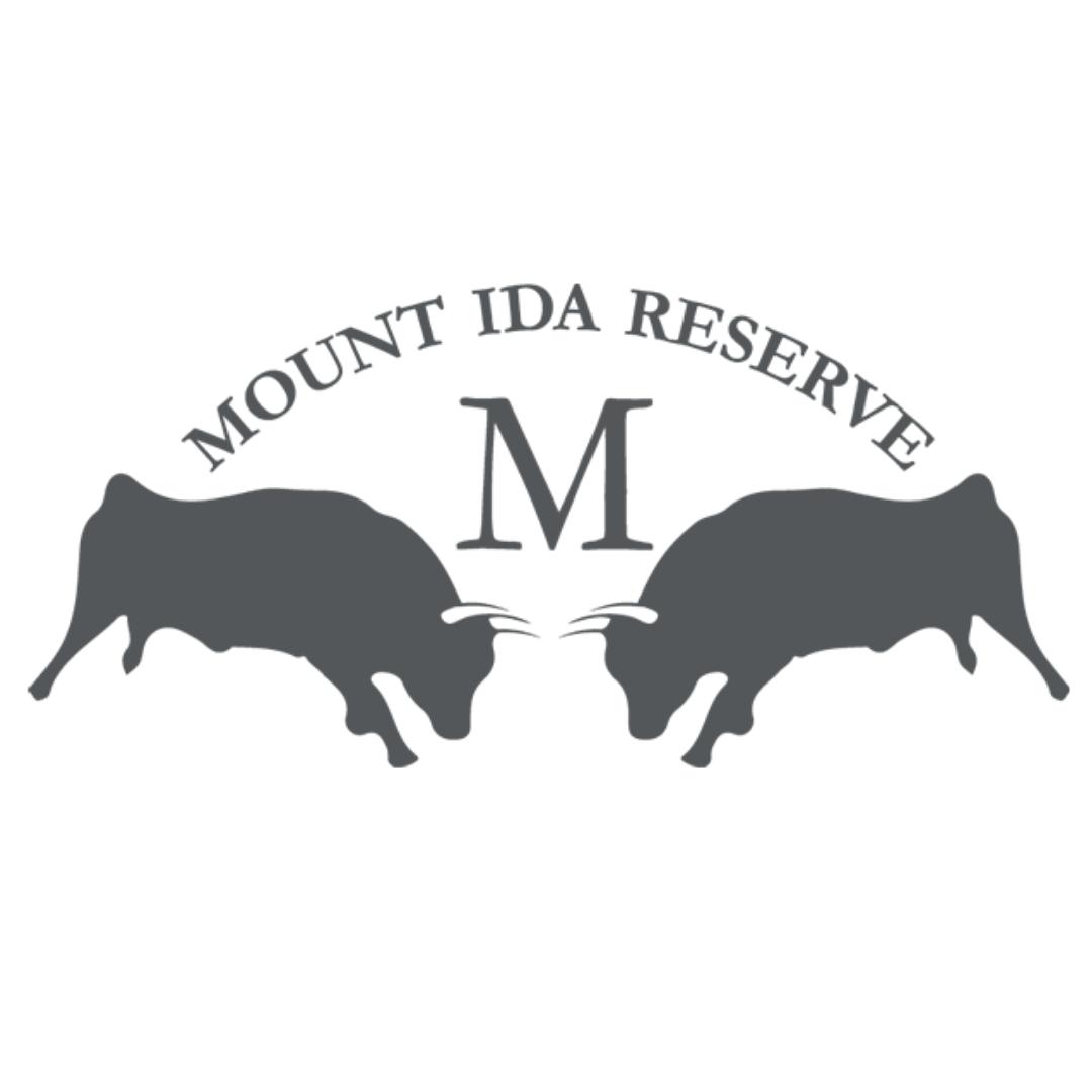 MountIda